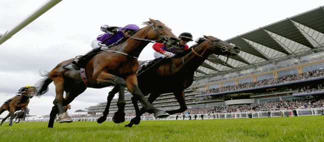 Royal Ascot Day 5 Tips: Limato A Diamond In Jubilee